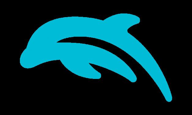 Dolphin Emulator for Mac Free Download | Mac Tools